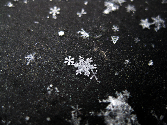 Star-shaped snowflake