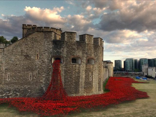 Poppies outside the Tower of London